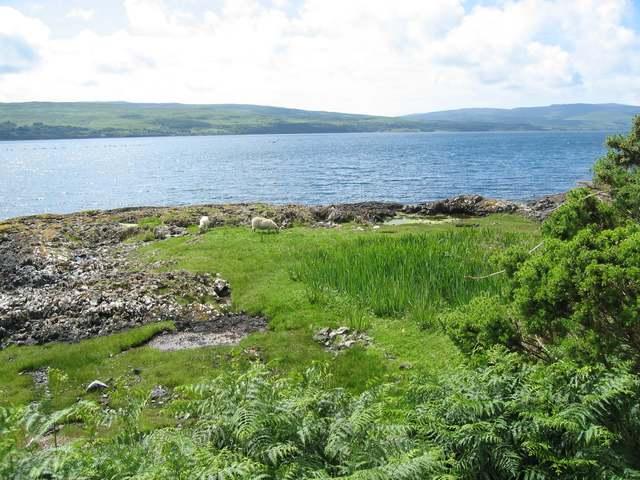 Shoreline at Killiemore