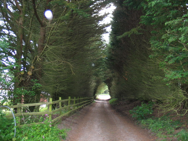 Road to Largie Farm, Tayinloan
