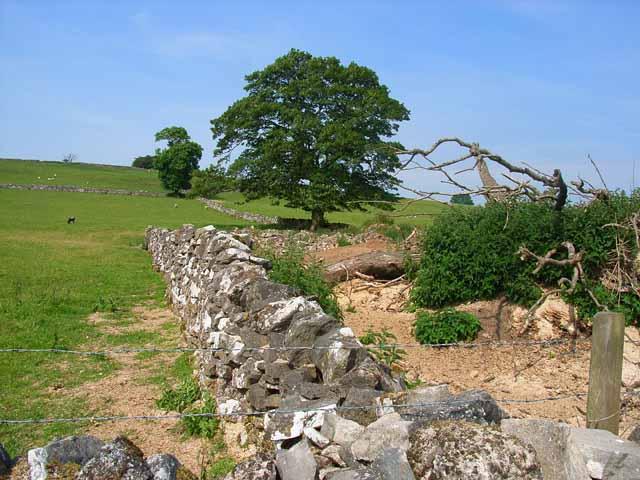 Ruin near Wetton