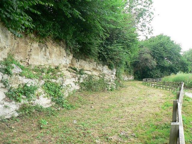 Quarry Face, Quarry Moor Nature Reserve, Ripon