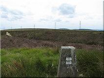 ST2597 : Mynydd Twyn-Glas by Phil White