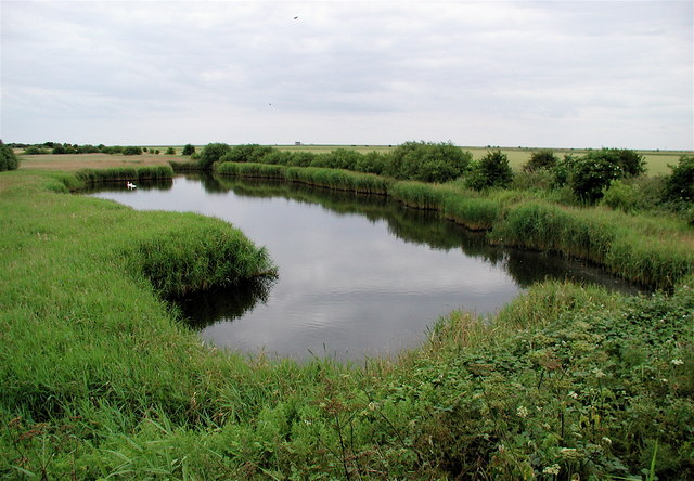 Wildfowl haven near Oxlands Hill, Welwick