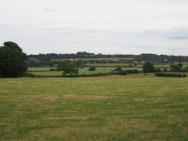 View from Skip Lane