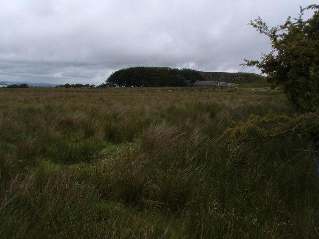 Towards Duntilland Hill
