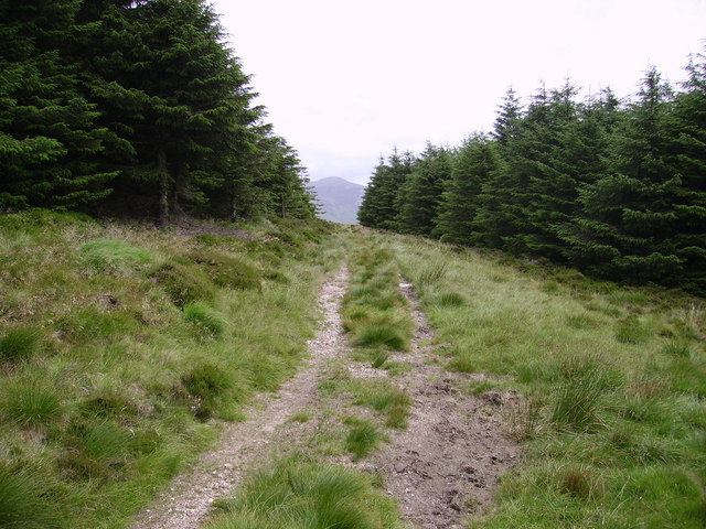 Old Mine Road Crag Fell