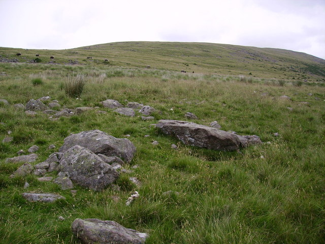 On Stockdale Moor