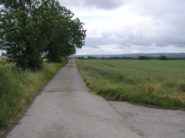 Lane to Osmond Croft