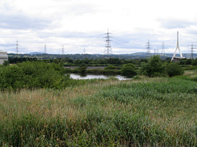 Naturalised land at Shotton