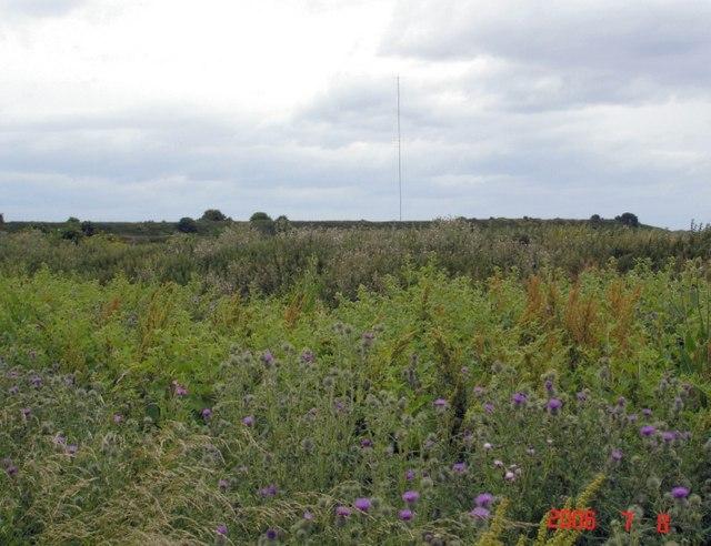 Former canal deposit dump on Frodsham Marsh