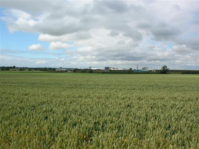 View towards Topcliffe Industrial Estate