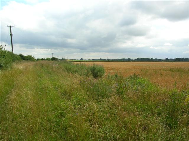 Bridleway off Ox Close Lane