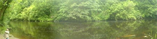 Avon above Millheugh