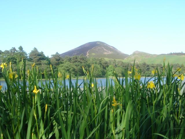 Bowden Loch