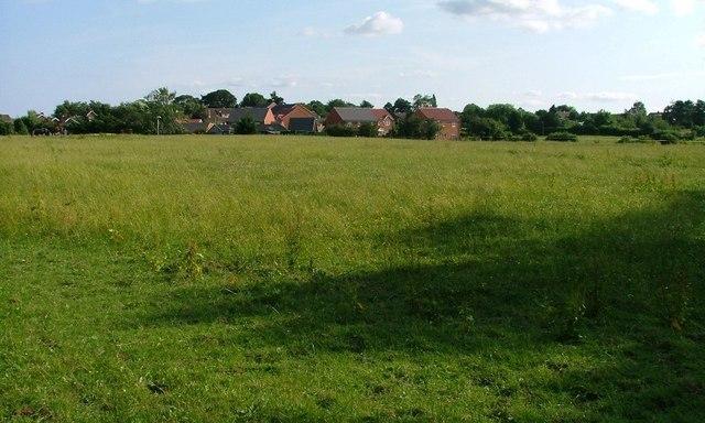Fields North of Kirklevington