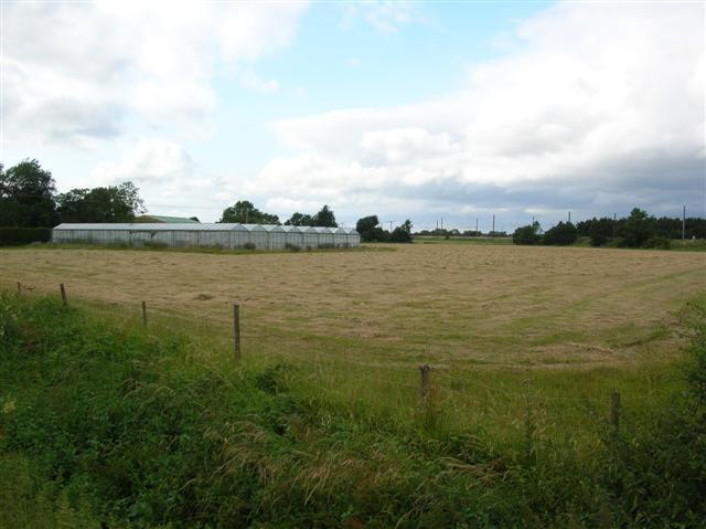 Greenhouses near Dalton
