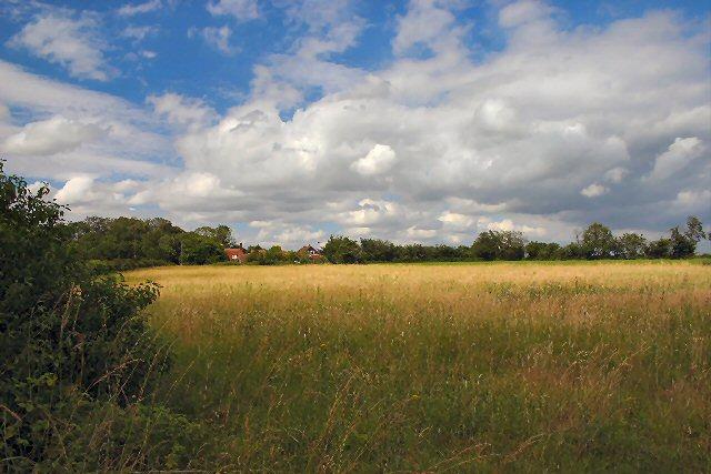 Midway Farm