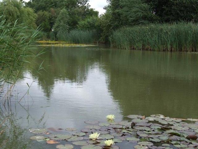 The lake at Longhill