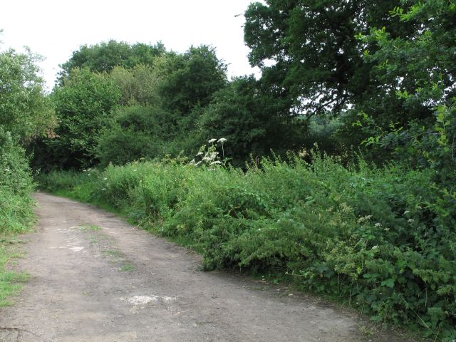 Byway southeast of Marston