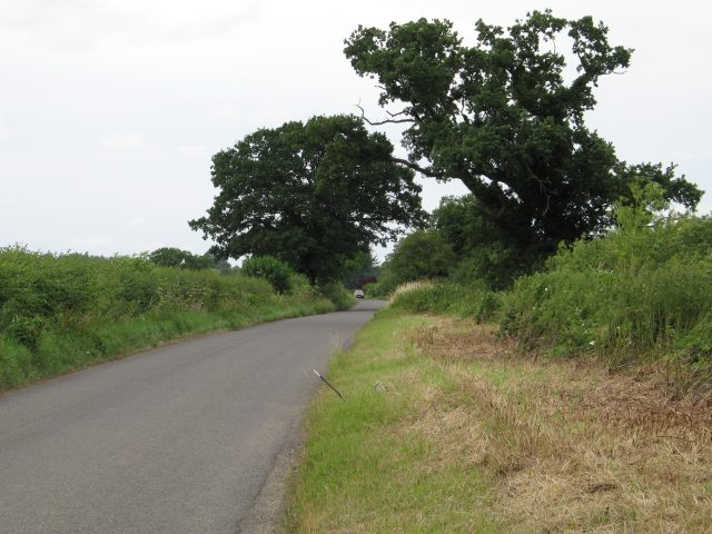 Road along boundary of the Old Park
