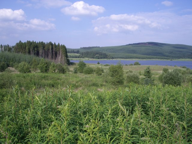 Carron Valley Reservoir