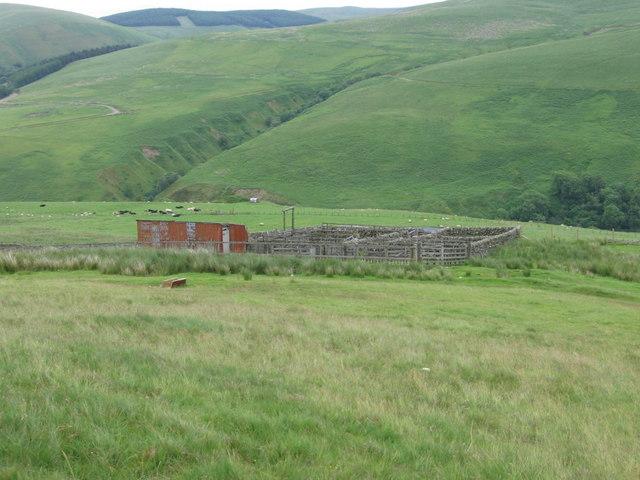 Enclosure on Glenflosh Hill