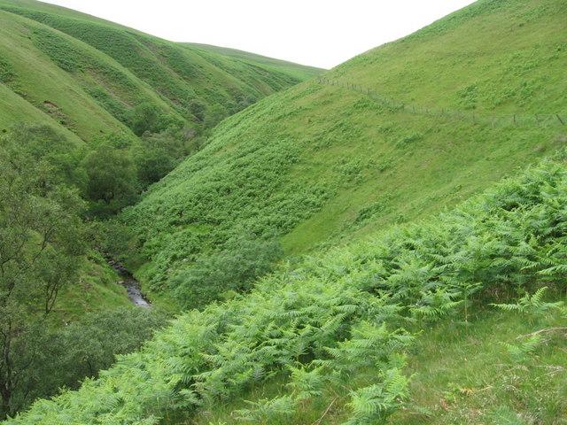 Back Burn below Cruereach Hill