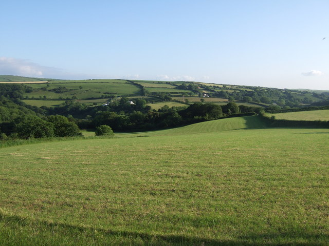 Looking west across Cwm Gwaun, early June