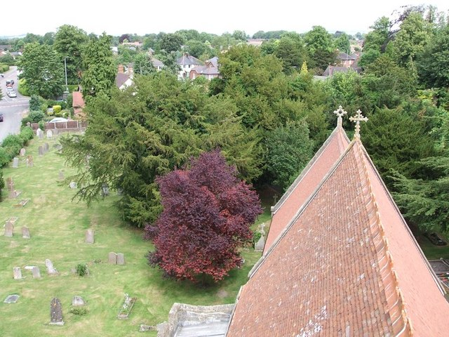 View from the Tower, St. Michael & All Angels