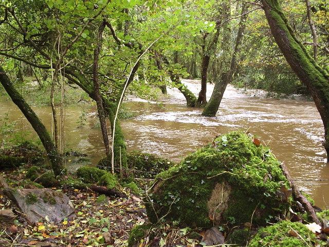 Afon/River Gwaun in spate