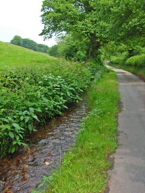 Roadside stream at Moddershall