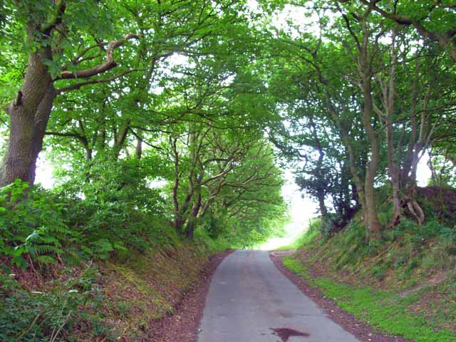 The lane from Knenhall to Stallington