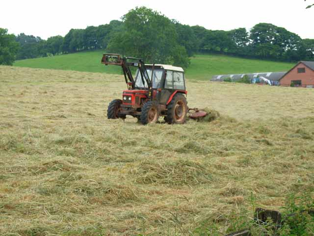 Haymaking near Berry Hill Farm