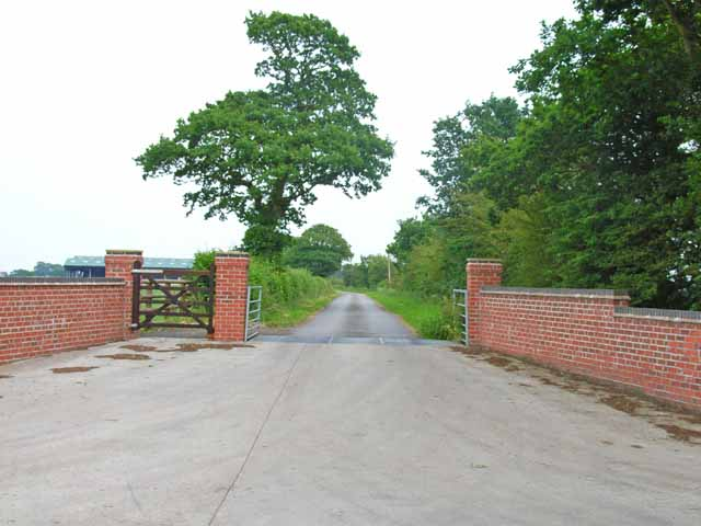 Driveway to New Buildings Farm
