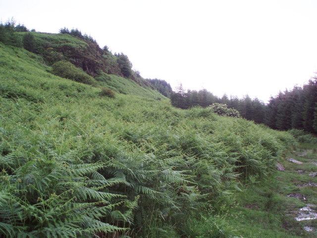 Footpath below Menteith Hills