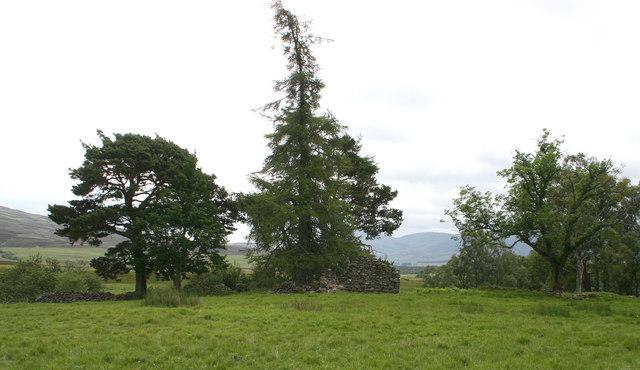 Ruin near Burn of Milton - Glen Esk