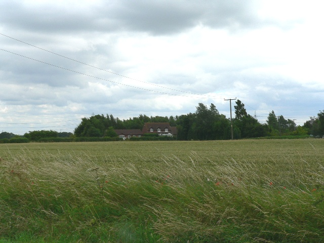 Crop and Windbreaks Round a Farmhouse