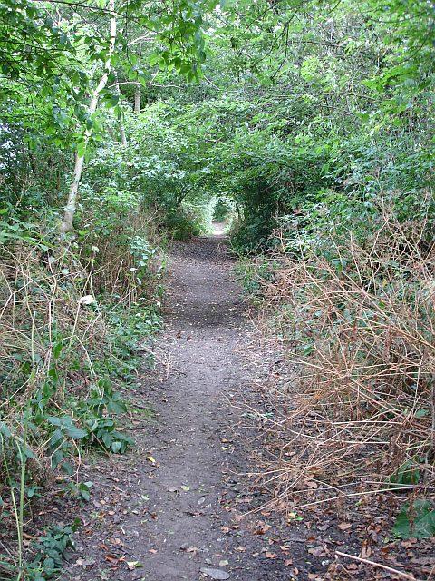Byway near Shingle Barn Lane