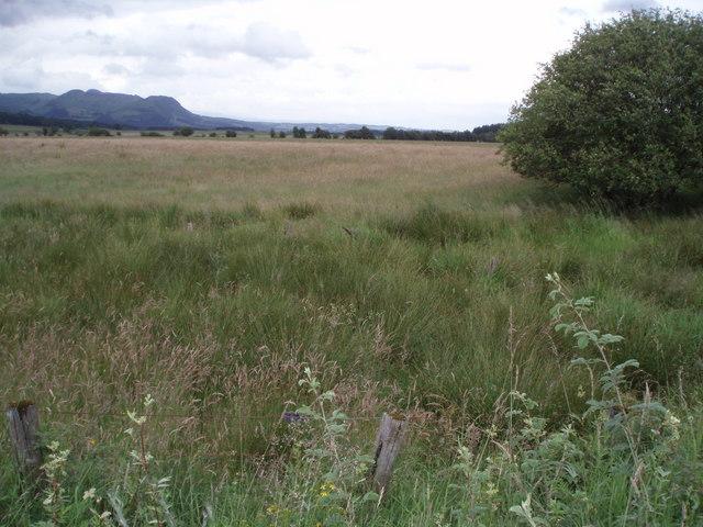 Carse of Shannochill