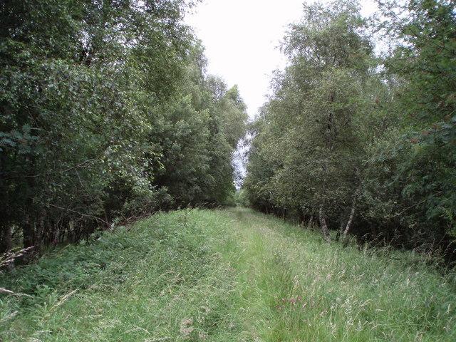 Disused railway line near Easterhill