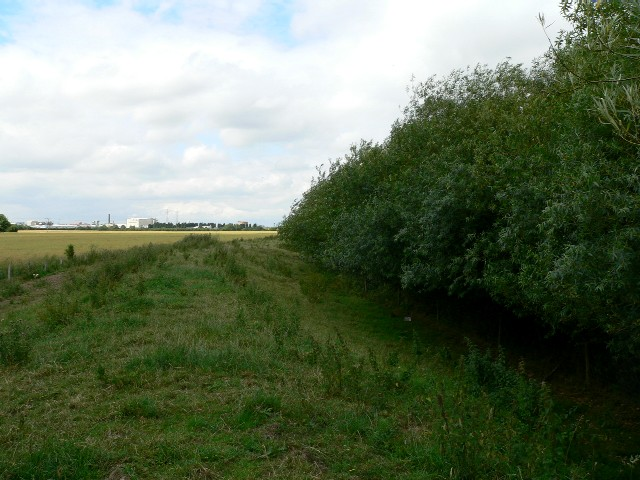Footpath to Selby via Roscarrs