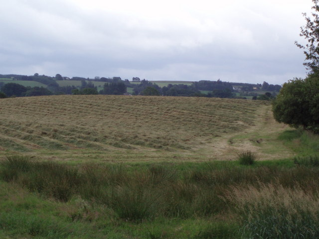 Harvesting near Buchlyie