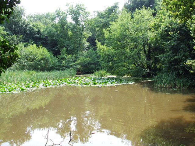 Hillditch pool