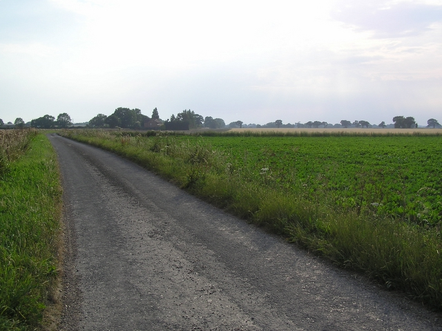 Towards Starkings Farm, Ludham