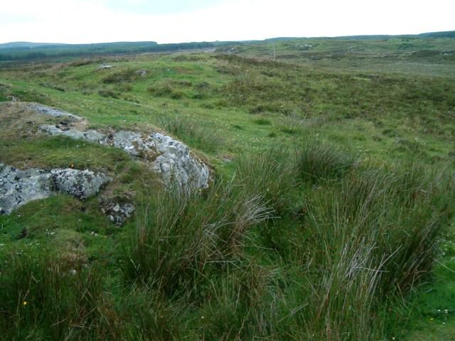 Moorland near Octofad