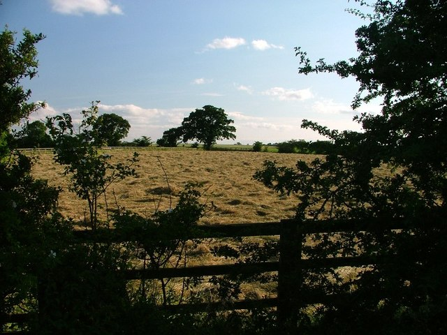 Drying Hay, Staindale Hill Lane
