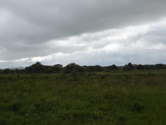 Easter Inch Moss, Blackburn, West Lothian