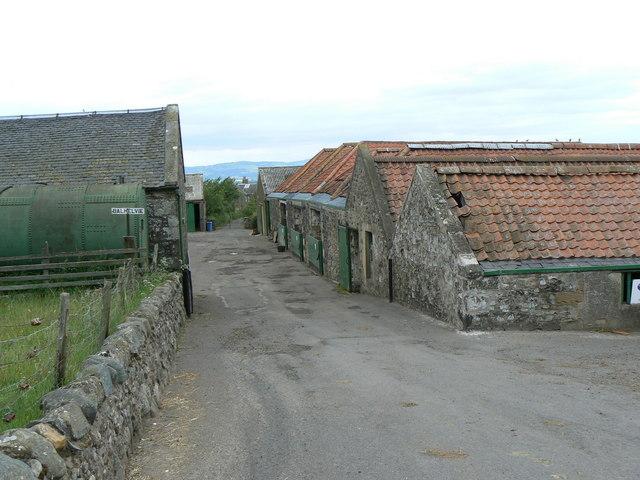 Balhelvie Farm