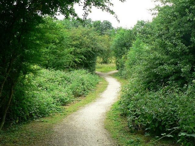 Footpath, Quarry Moor nature reserve, Ripon