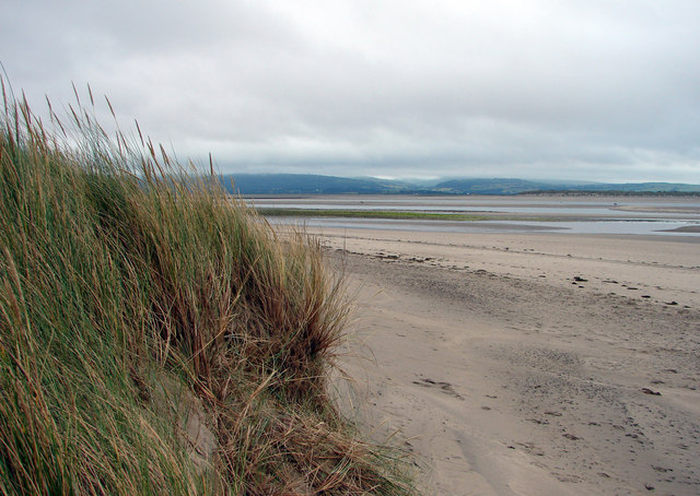 Sand Dunes at Aberdovey