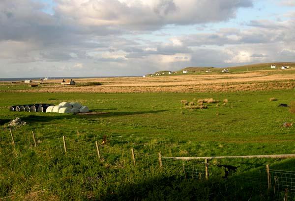 Kilmaluag crofting settlement